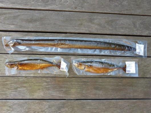Les beaux poissons de Raimond.